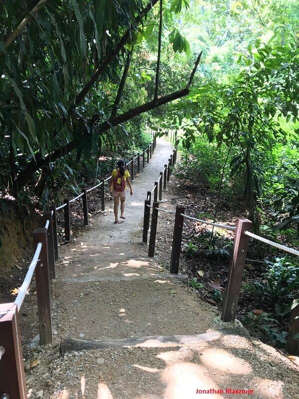 Thomson Nature Park Rambutan trail jilaxzone.com