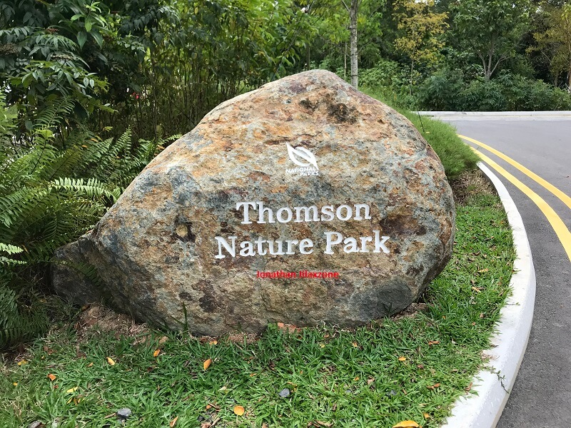 Thomson Nature Park stone logo jilaxzone.com
